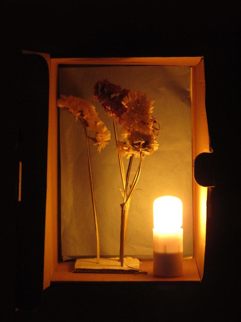 lamp-768x1024